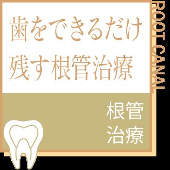 歯をできるだけ残す根管治療